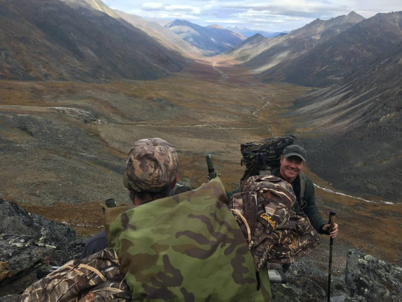 Backcountry Dall Sheep Hunt