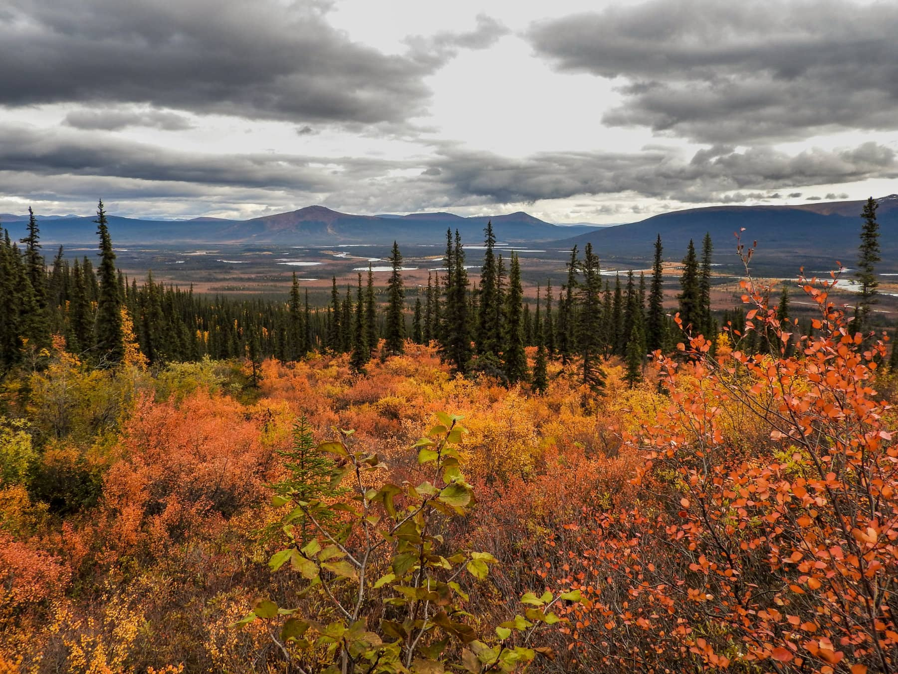 Fall Alaska Brooks Range