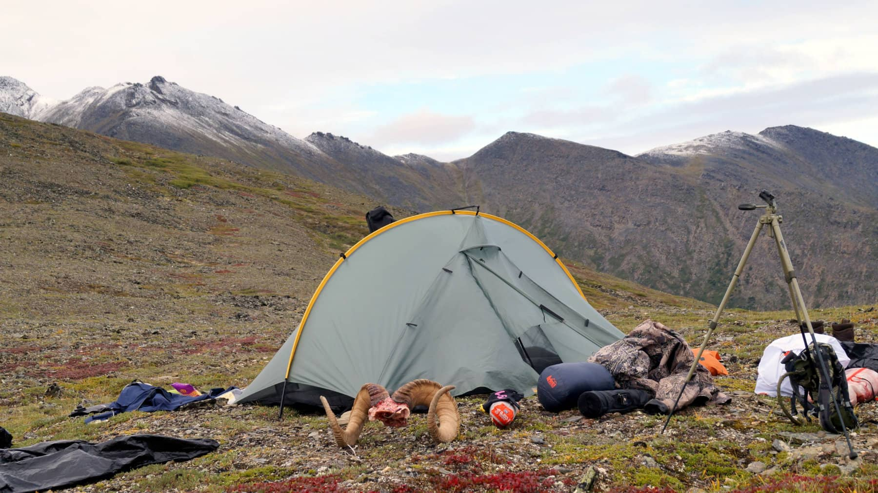Alaska Dall Sheep Hunting Camp