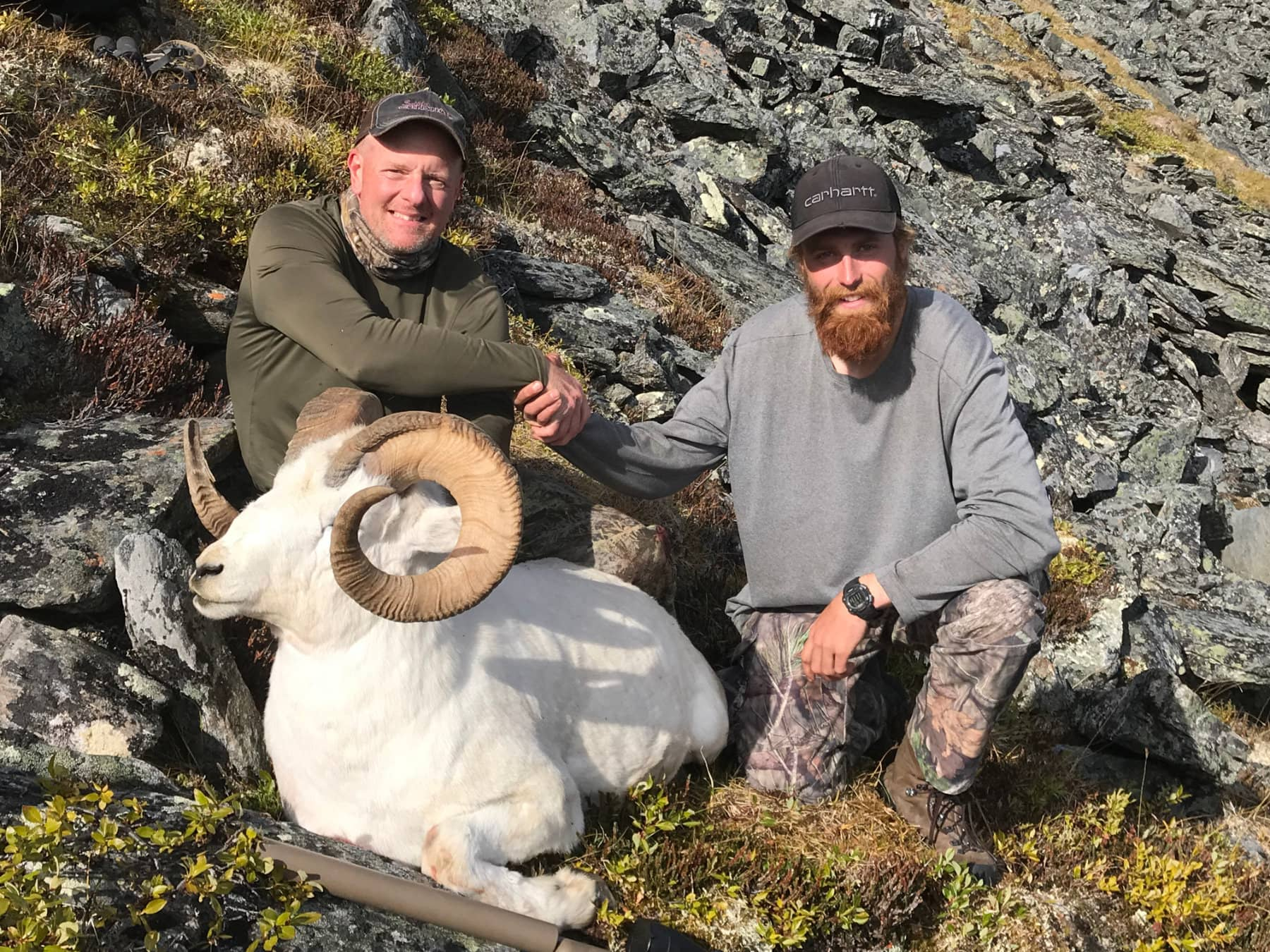 Alaska Dall Sheep Hunts