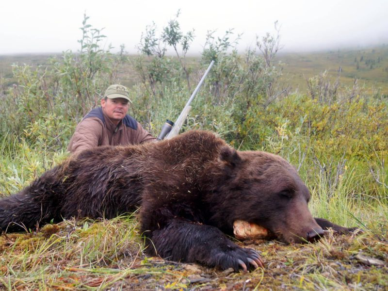 Alaska Grizzly Hunts In The Brooks Range