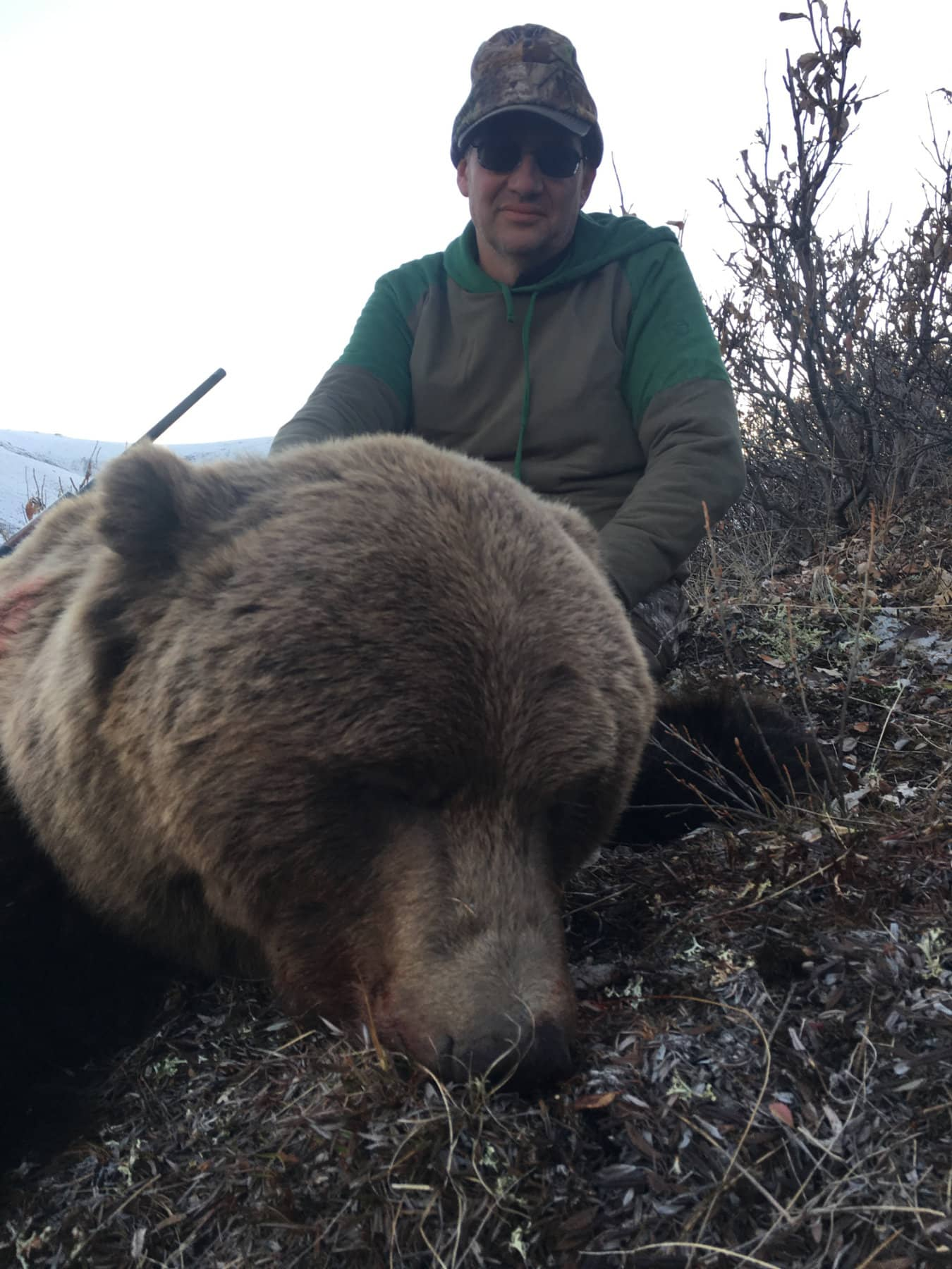 Bear Hunts Alaska