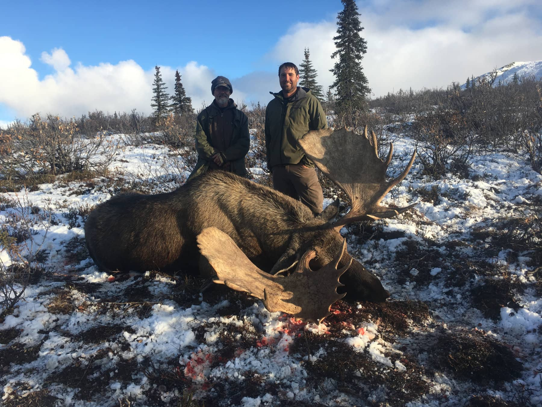 Big Game Guided Moose Hunt