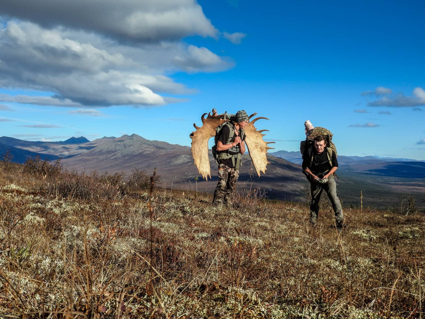 Big Game Guided Moose Hunts