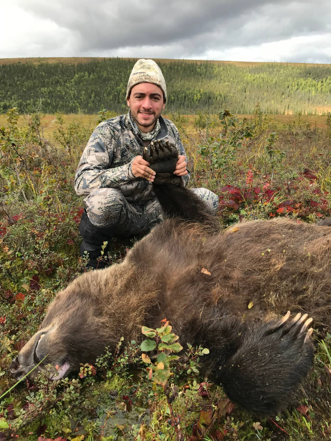 Brooks Range Grizzly Hunts