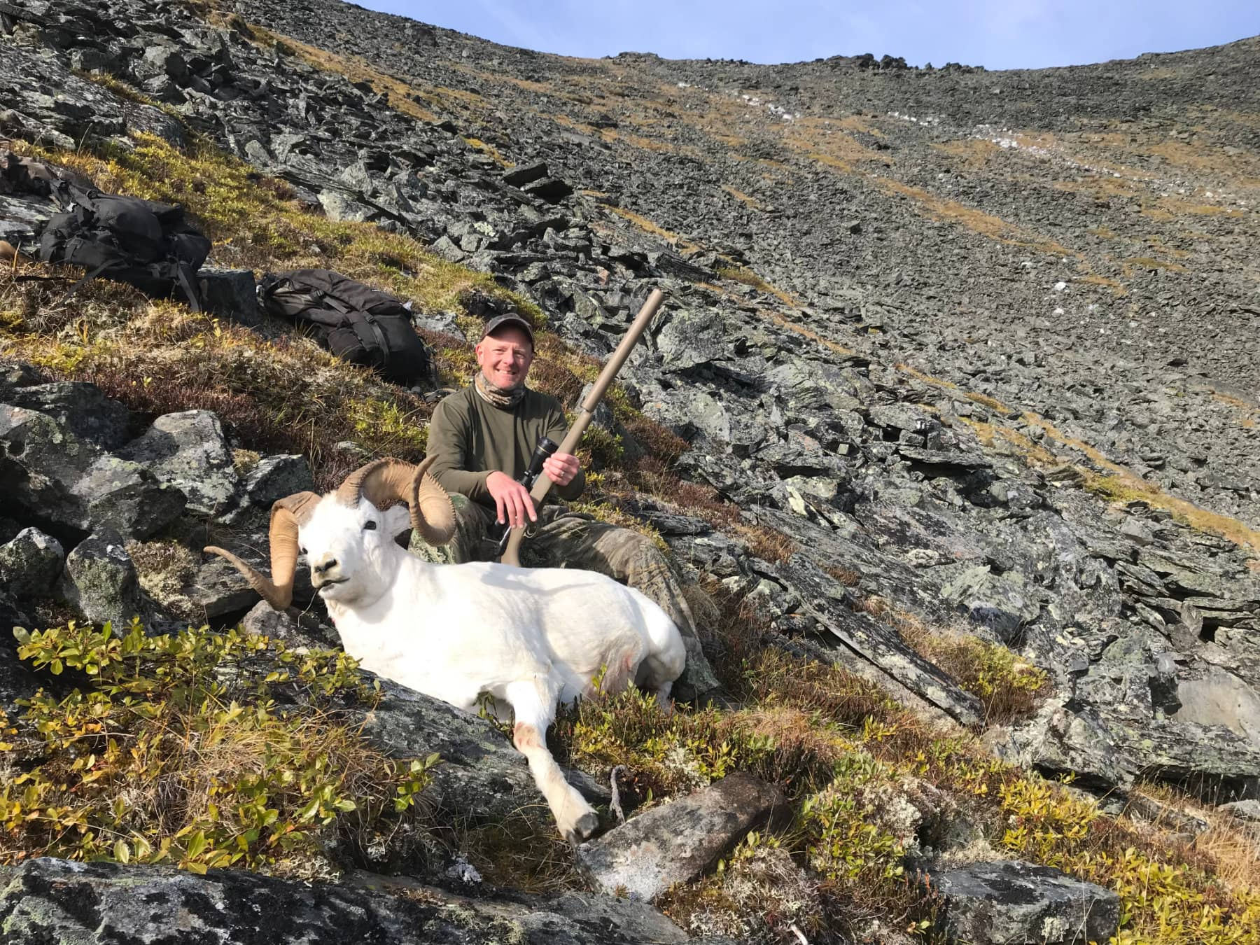 Dall Sheep Guided Hunts
