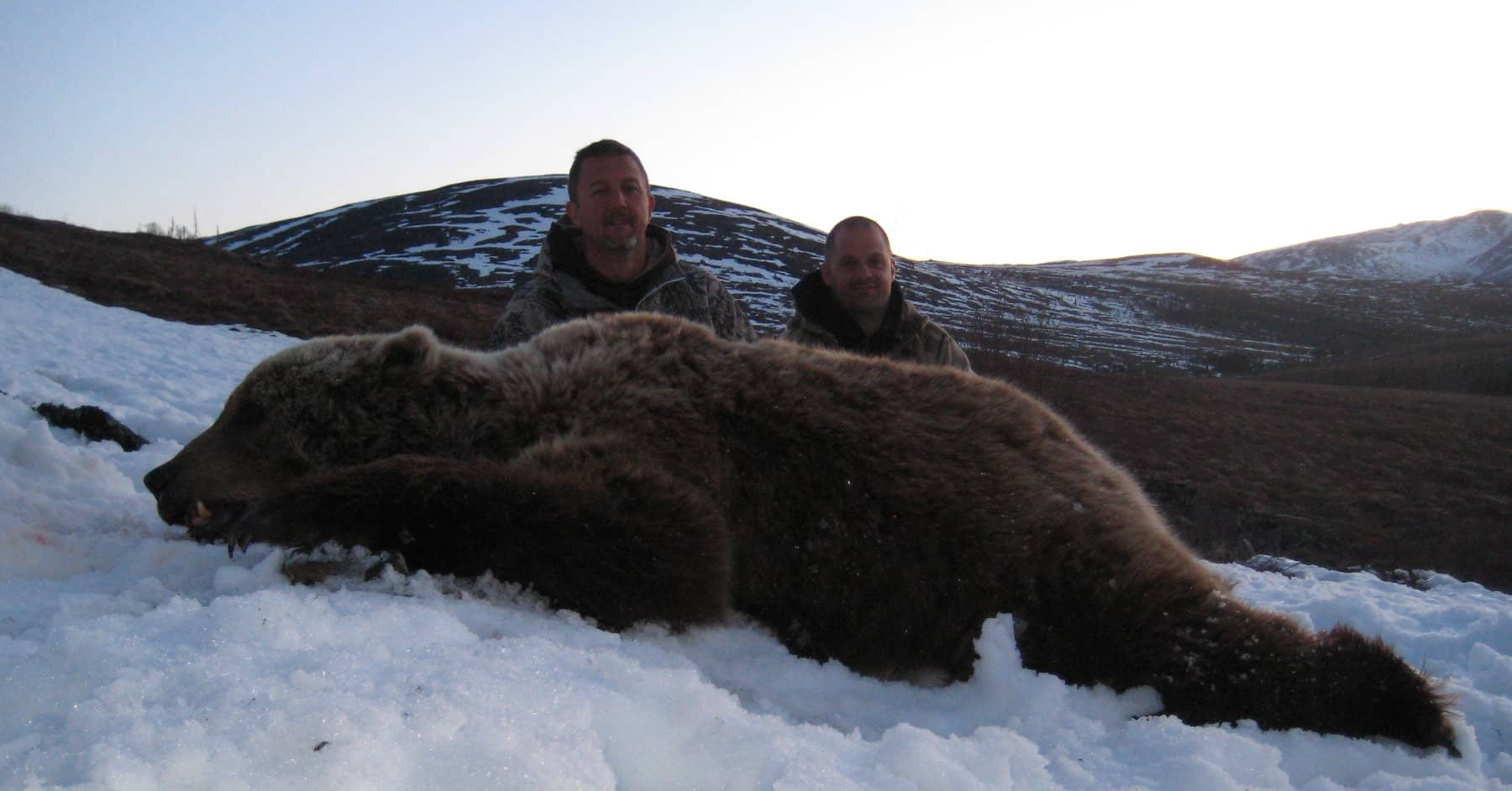 Guided Alaska Grizzly Hunt