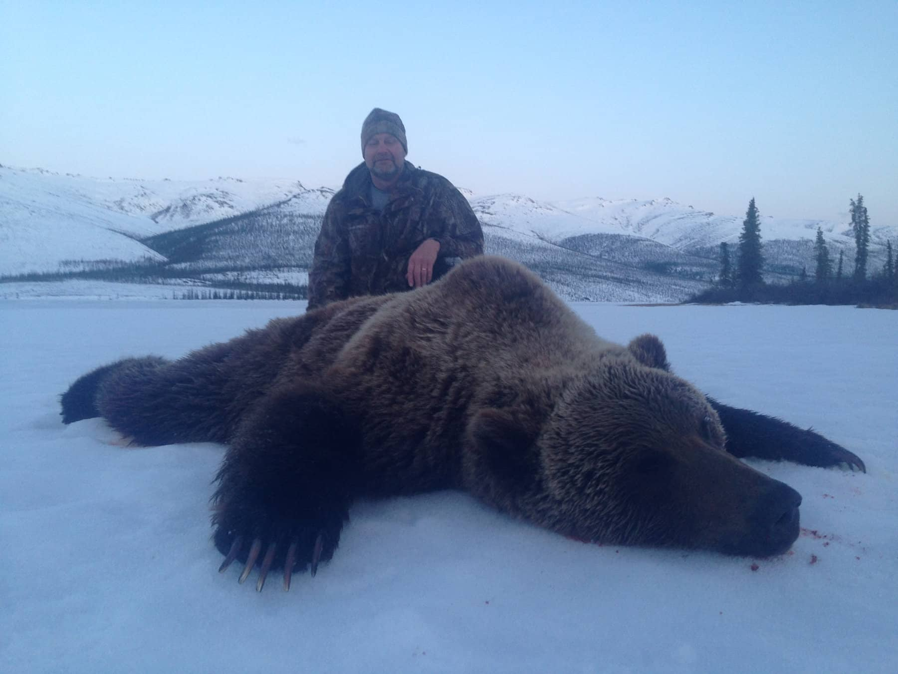 Guided Alaska Grizzly Hunts