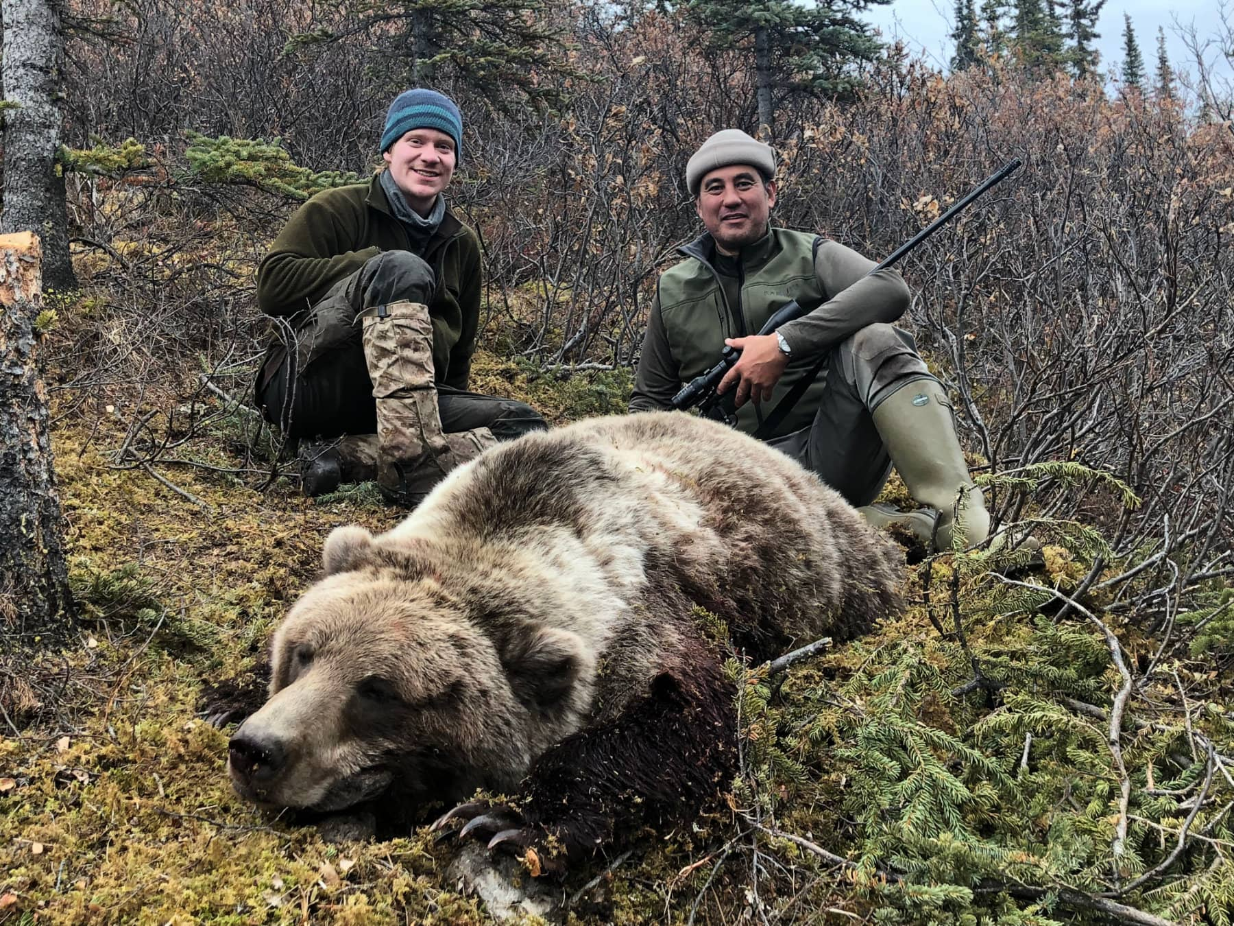 Guided Grizzly Hunts Alaska
