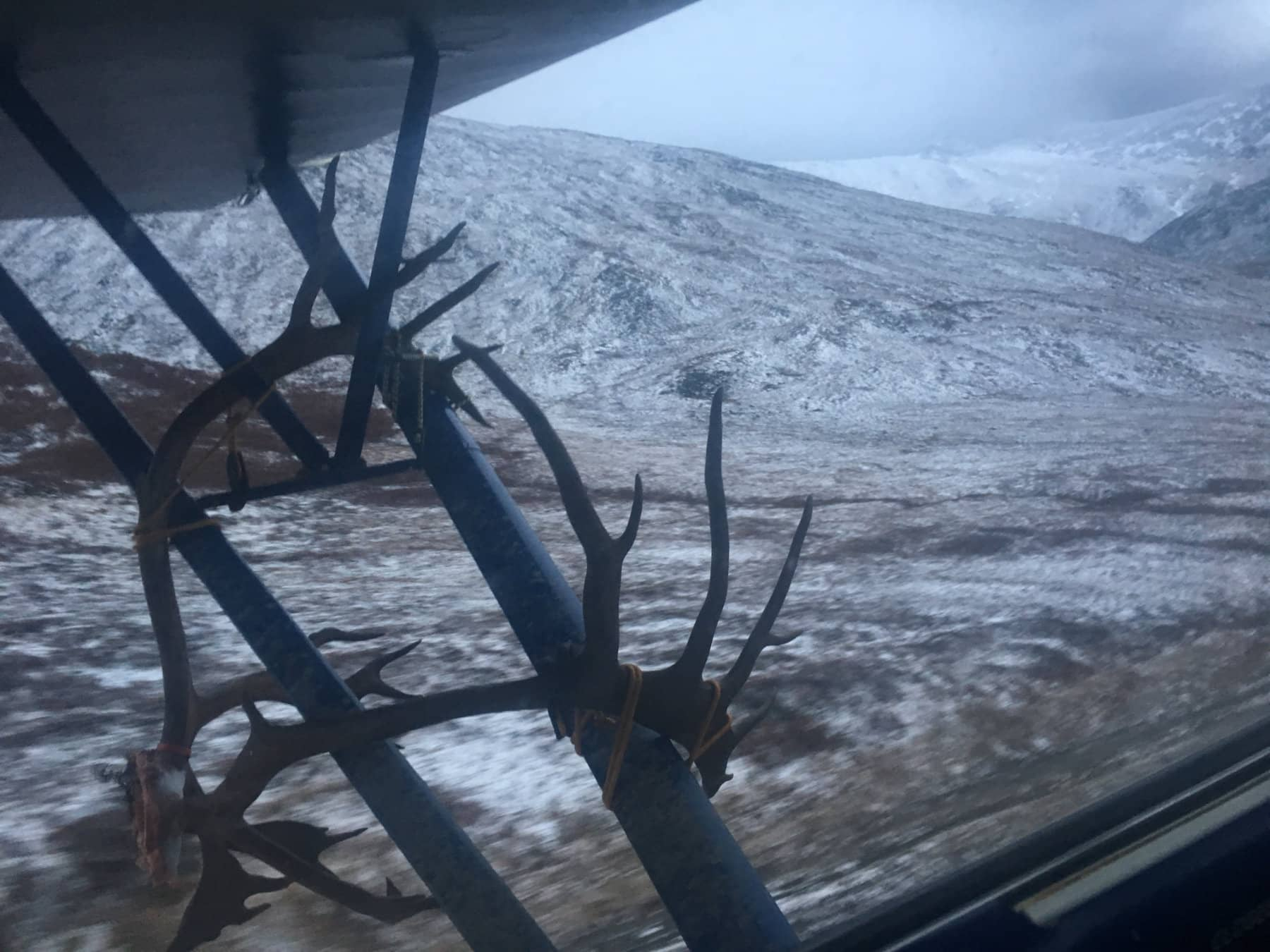 Successful Caribou Hunt in Alaska
